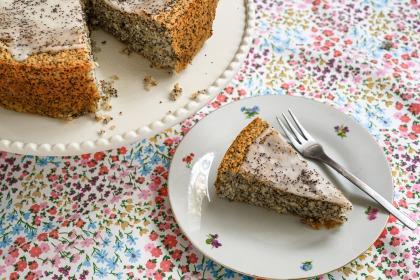 עוגת ספוג עשירה ללא קמח